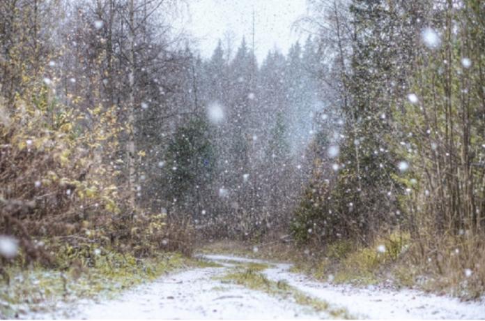Meteorologii anunta posibile ninsori la munte
