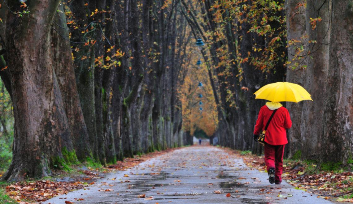 Meteorologii ANM anunta ploi in mai toata tara